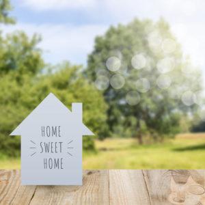 homes for sale in Aurora 80016 neighborhoods